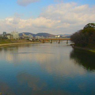 岡山 旭川一帯の回遊性.jpg