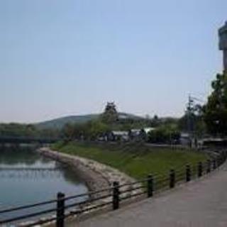 石山公園 から 岡山城.jpg